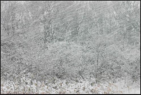 非常食 猛吹雪